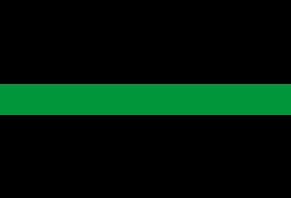 Fondazione Berengo Logo Green